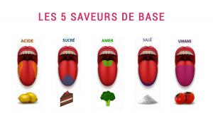 Les principes des accords des quatre saveurs avec le vin : sucré, salé, acide, amer